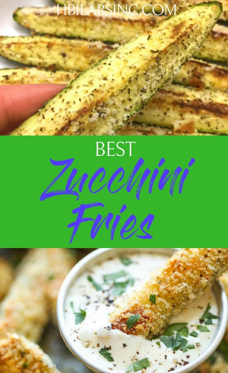 The best zucchini fries recipes introduce health benefits, add flavor to your diet, and satisfy your taste buds without all of the fat and grease of traditional fries. #zucchinifries #zucchini #healthyrecipes #health #recipes #food #weightloss #veggies