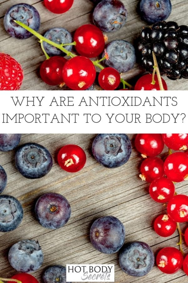 The power of antioxidants is well-known and HBI Labs Purify is a health supplement that concentrates the power of antioxidants in an all-natural way. How to Use Antioxidants | Antioxidant Facts | Where to Find Antioxidants | Health Supplements for Women | Health Supplements for Weight Loss | Weight Loss Supplements